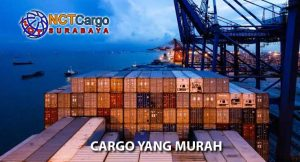 cargo yang murah