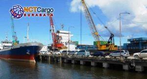 Tarif Murah Jasa Ekspedisi Surabaya Timika Dari NCT