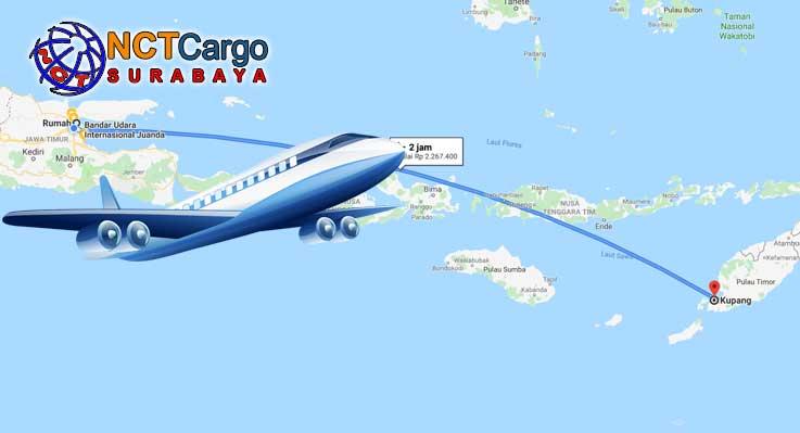 Cargo Pesawat Surabaya Kupang Dengan NCT